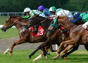 İzmir at yarışları sonuçları