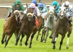 Bursa at yarışı sonuçları