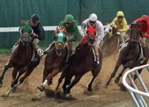 Ankara yarışları sonuçları