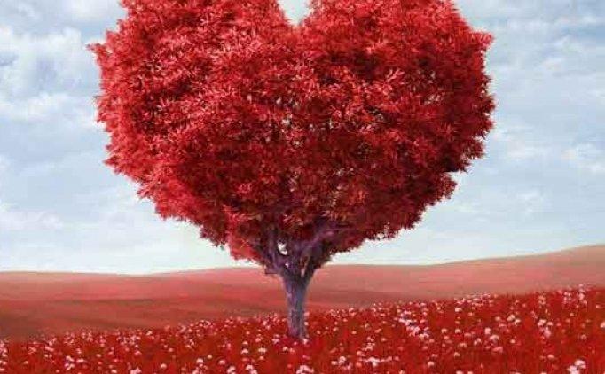 14 Şubat Sevgililer Günü mesajlarında en yeni sözler, Sevgililer Günü tarihçesi